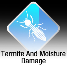 Termite and Moisture Control